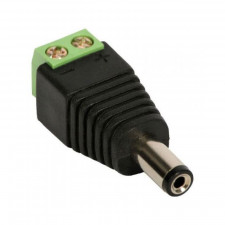 Adaptador P4 Macho 2,1mm para Borne